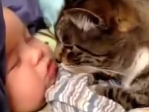 8 Bebés y Animales que Serán Mejores Amigos de por Vida – Lo Sorprenderá
