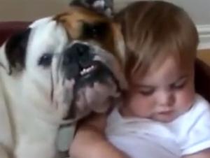 Estos Perros y Sus Bebés Humanos Se Vuelven Mejores Amigos – ¡Y Con Buena Razón!