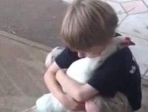 Claramente, Este Chico no es Temeroso a los Animales. ¡Y Esa no es Ninguna Gallina Ordinaria!