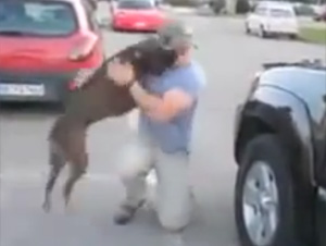 El Perro Más Emocionado Jamás, Le Da la Bienvenida a Papá