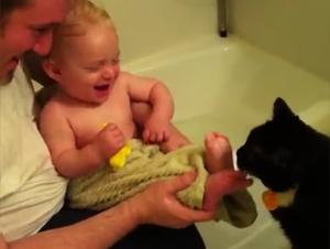 Este Gatito Tiene un Gusto por Algo un Poco Extraño. ¡Y Yo no Puedo Parar de Reir!