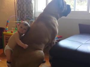 Este Bebé da el Mejor. Abrazo.  Jamás. –  ¡Lo Tuve Que Ver Una y Otra Vez!
