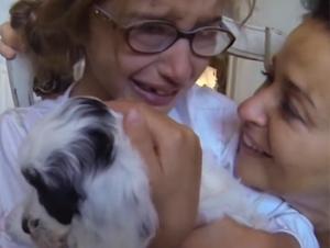 Esta Niña de 7 Años Recibió el Regalo Más Increíble. ¡Trate de no Llorar Como los Demás!