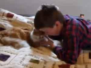 Una Emotiva Reunión de Un Niño con su Gato Perdido