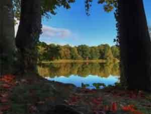 Escuche esta Preciosa Canción ¡Le Espera algo Poderoso!- Videos Música, Juan Luis Guerra