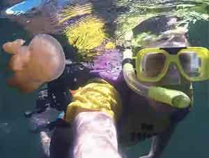 Hombre Nada Por Un Lago Con Millones de Medusas – ¡Véalo Usted Mismo!
