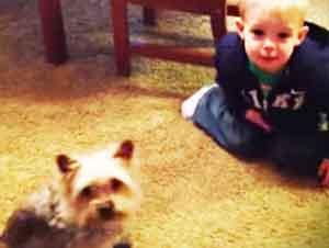 Aparentemente Es Mucho Más Fácil Entrenar a Este Niño a Sentarse Que a Su Perro – ¡Tan Lindo!