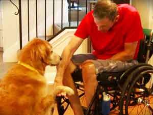 Hombre Paralizado Salvado Por Su Perro, Toma Vuelo Y Sigue Con Sus Sueños – ¡2:50 Inspirador!