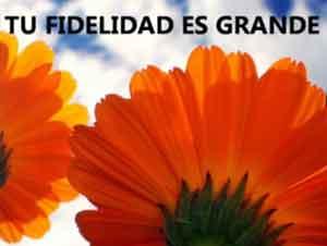 La Fidelidad de Dios es Grande ¡Nunca Lo Dude! – Música, Marcos Witt