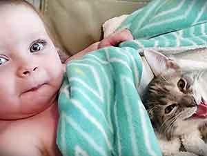 La siesta de esta bebita y su gatito te dejarán con ganas de acompañarlos.