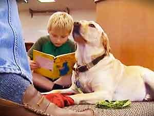 Niños practican la lectura leyendo historias a unos perros!