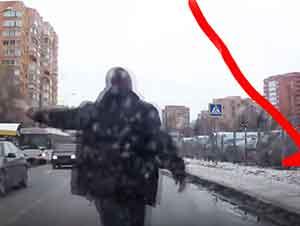 Buen samaritano detiene tráfico para ayudar a un cachorro cruzar la calle.