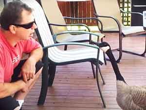 Señor que habla con un ganso.