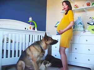 Progresión de un embarazo en 90 segundos.