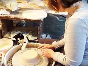 Gato Ayuda A Crear Vasijas De Barro