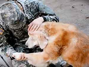 Perro Se Emociona AL Ver Nuevamente A Su Soldado Favorito