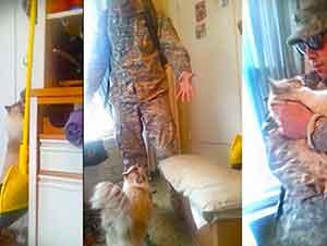 Mira Como Reciben Este Animalito A Su Soldado Cuando Regresa A Casa