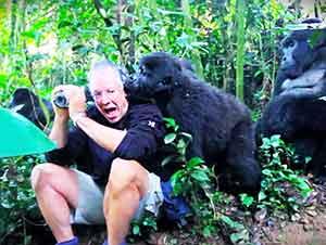 Este Hombre Tuvo Un Encuentro Cuerpo A Cuerpo Con Un Gorilla Lomo Plateado