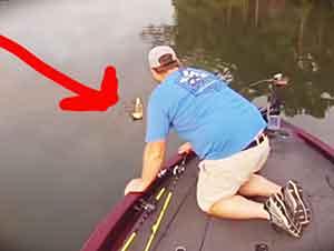 Salieron A Pescar Y Regresaron Con Dos Gatitos Que Nadaban Deseperados Por El Río