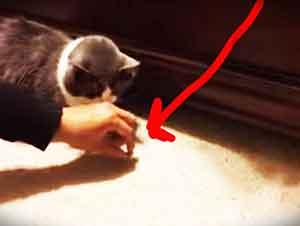 ¡Cuidado! Que Hay Un Ladrón Escondido Debajo De La Cama… JAJAJA
