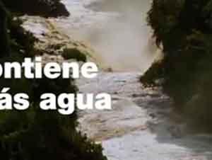 La Belleza Del Rio Amazonas