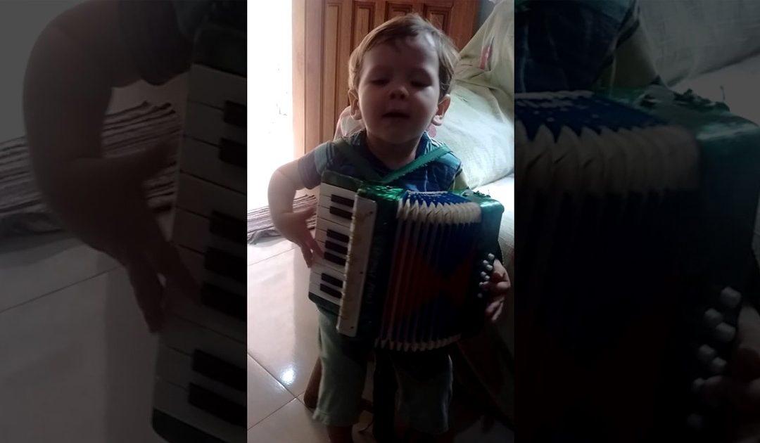 Niño Juega A Tocar El Acordeon